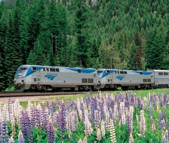 amtrak train in field