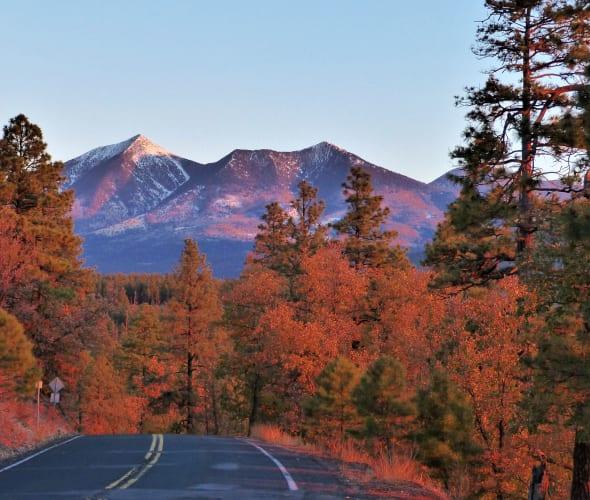 mountains in Flagstaff, AZ at sunrise
