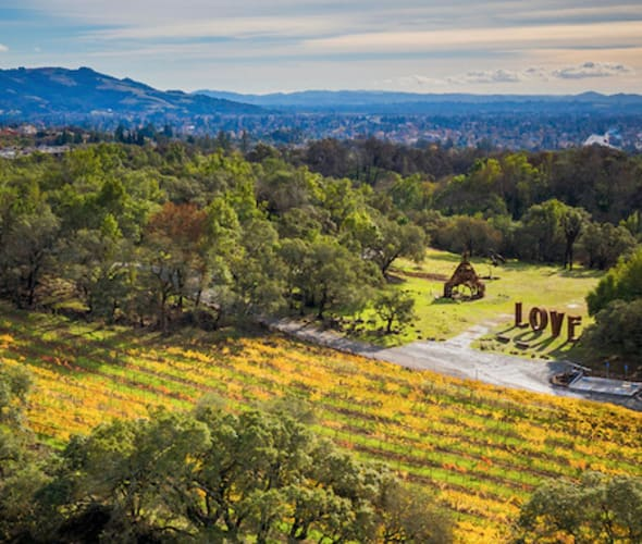 View of Napa Valley in Fall