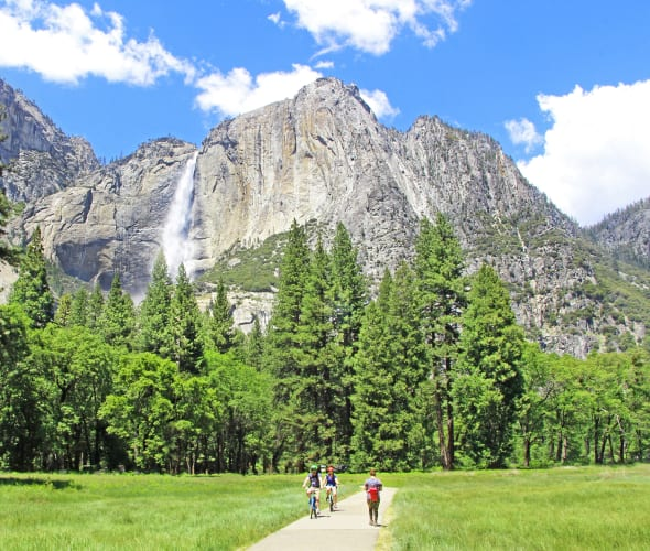 Cyclists ride through Yosemite Valley with views of a waterfall in the background.