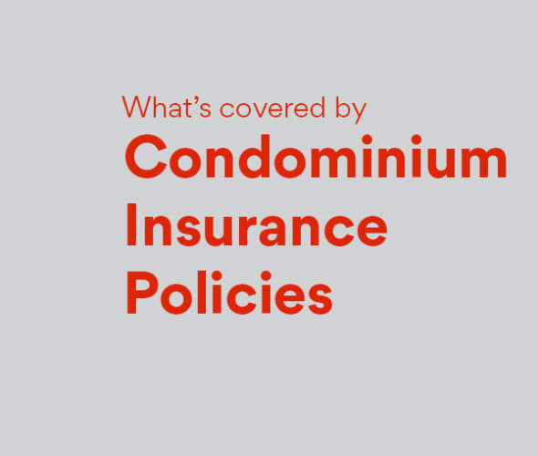 what's covered by AAA Condo Insurance Policies