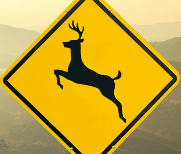 Yellow deer crossing sign with foggy mountains visible in the distance