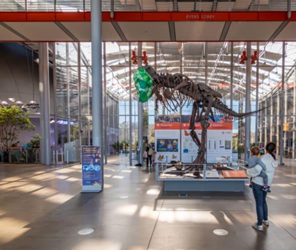 California Academy of Science lobby with dinosaur skeleton