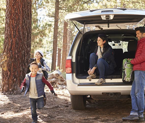 family with AAA car insurance hikes in the pine forest